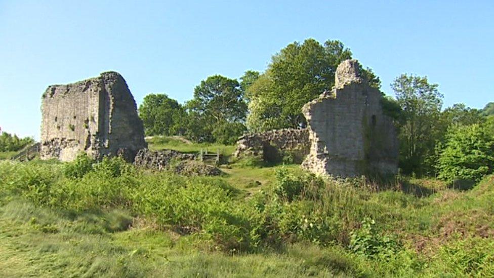 Castell Caergwrle