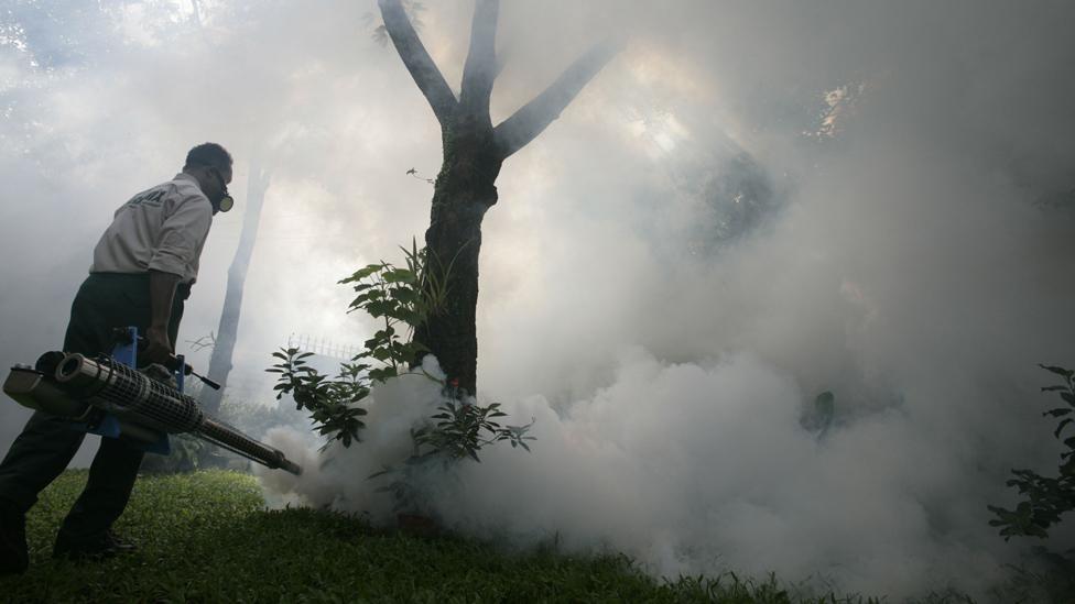Man fumigates area to combat dengue fever