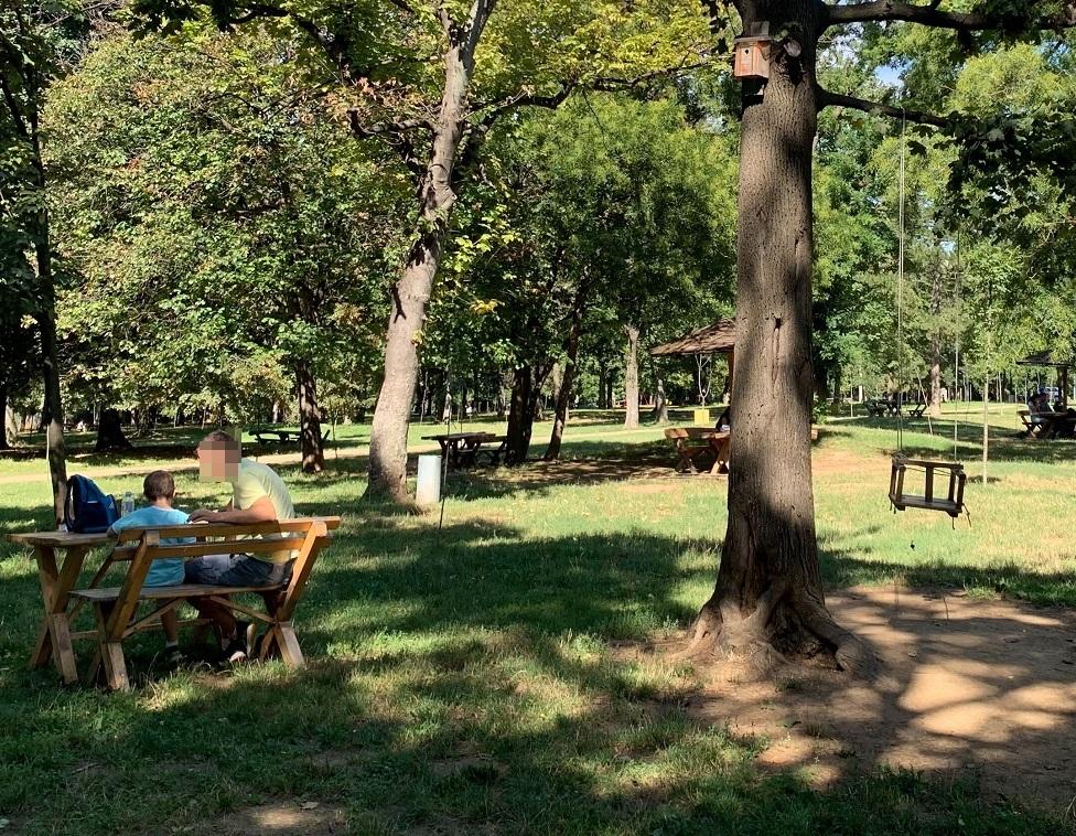 park, tata i sin, roditelji