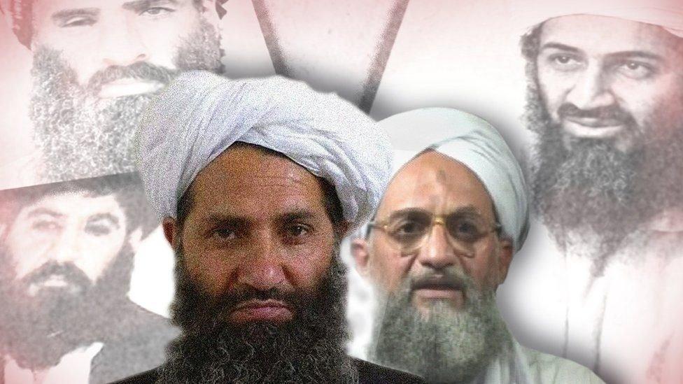 زعيم طالبان هبة الله اخوند زاده وخلفه صور بن لادن والظواهري والملا عمر