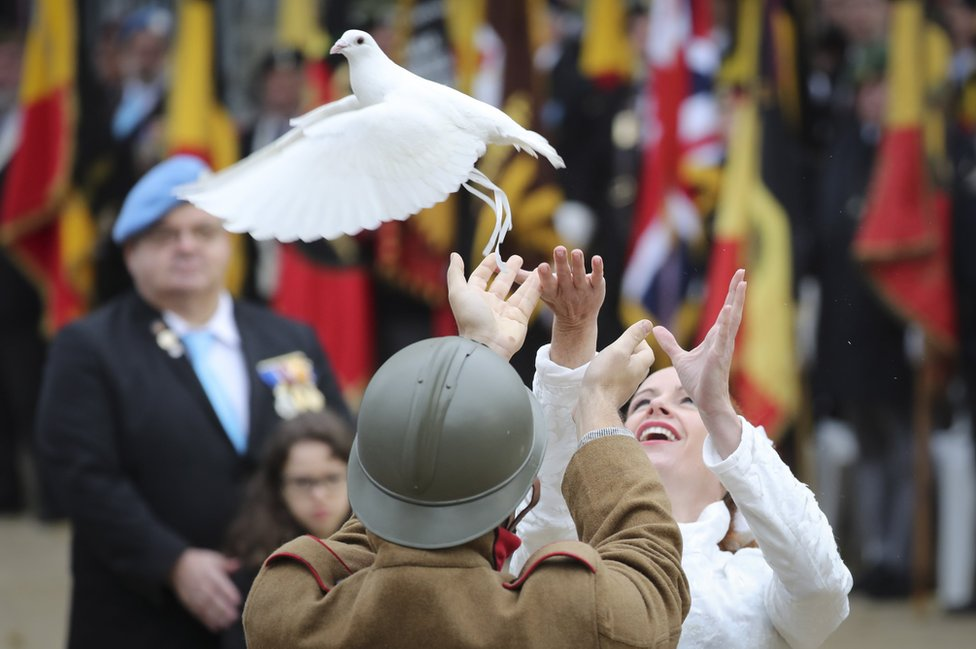 A dove being released