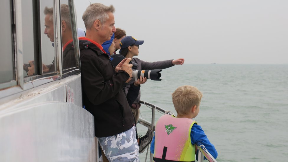 Tourists on a pink dolphin tour