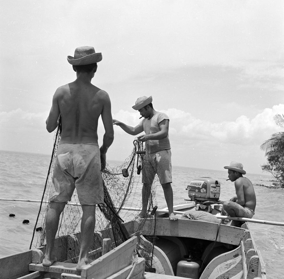 Venezuela alguna vez tuvo su propia y floreciente industria pesquera. Aquí, pescadores en la isla de Toas, cerca de Maracaibo, 1950