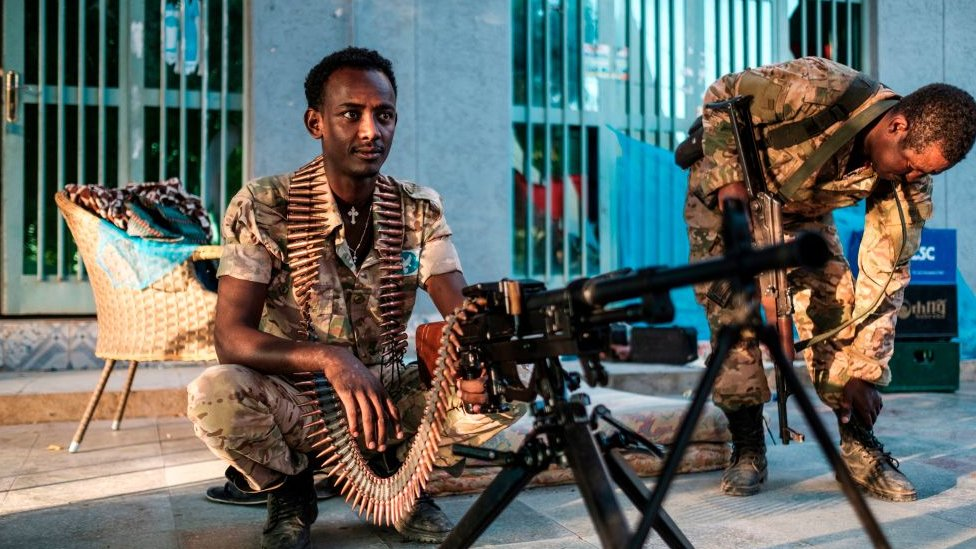 Эфиопия: власти требуют от повстанцев Тыграя сдаться, угрожая атаковать их столицу