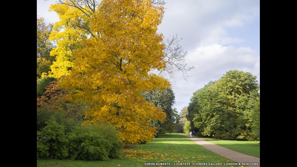 The National Arboretum, Westonbirt, Gloucestershire