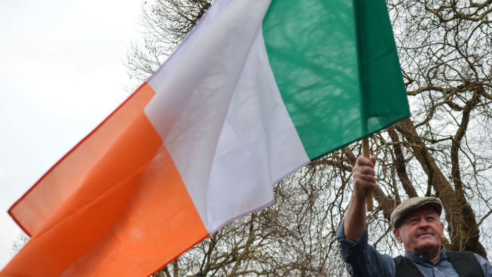 Man waves flag in front of Leinster House in December 2018