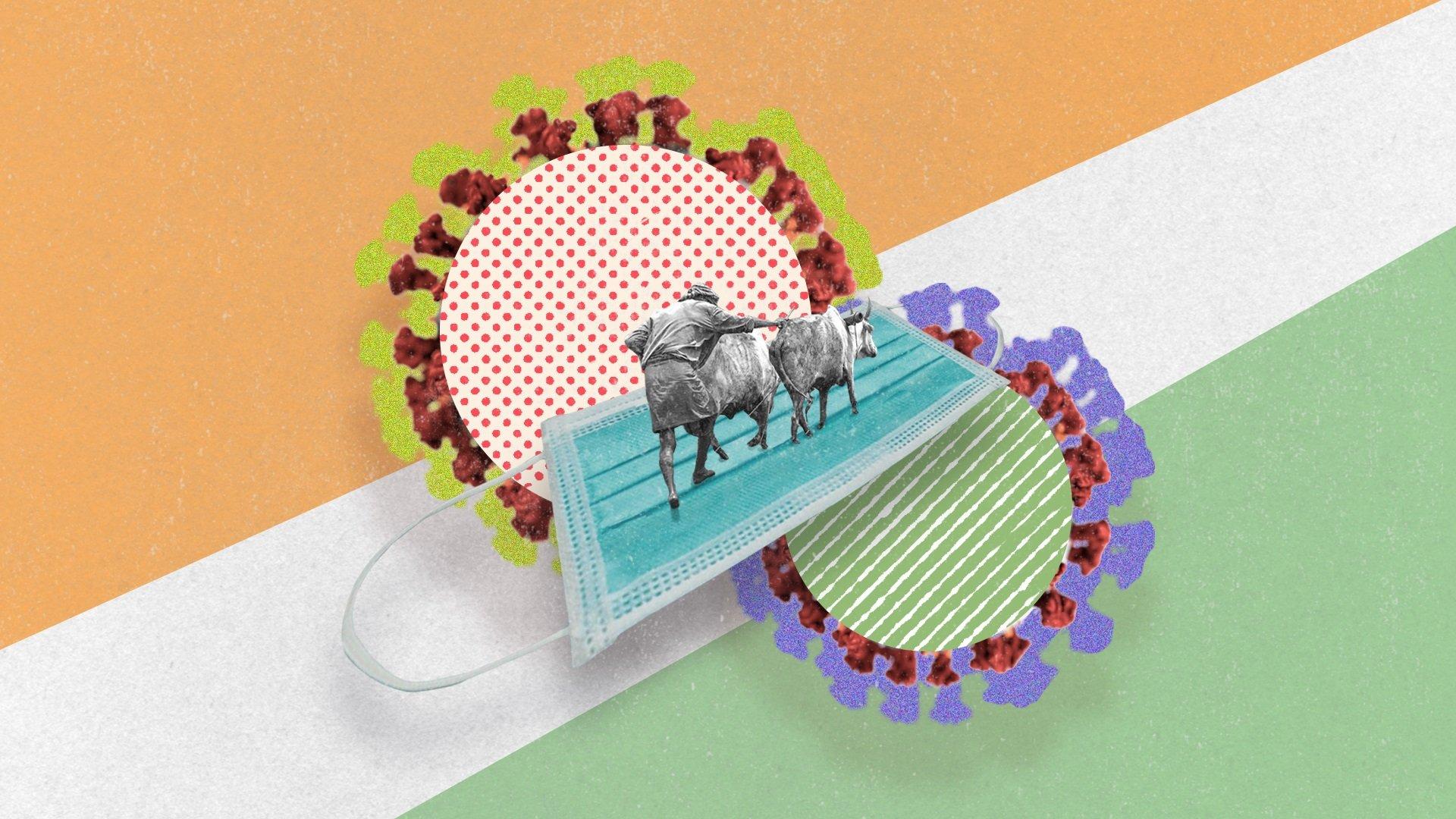 Collage de un granjero con su ganado, sobre el fondo de los colores de la bandera de la India.