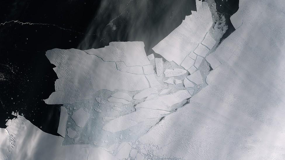 Resquebrajamiento de un iceberg que se desprendió del glaciar Isla Pine en Antártida Occidental
