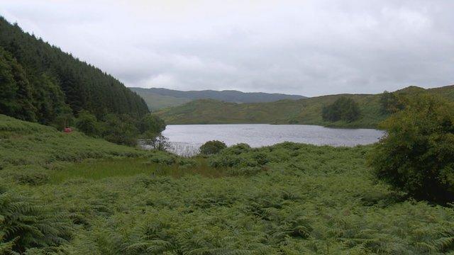 Loch nan Druimnean