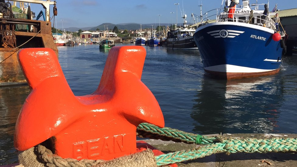 Fishing boats in Kilkeel