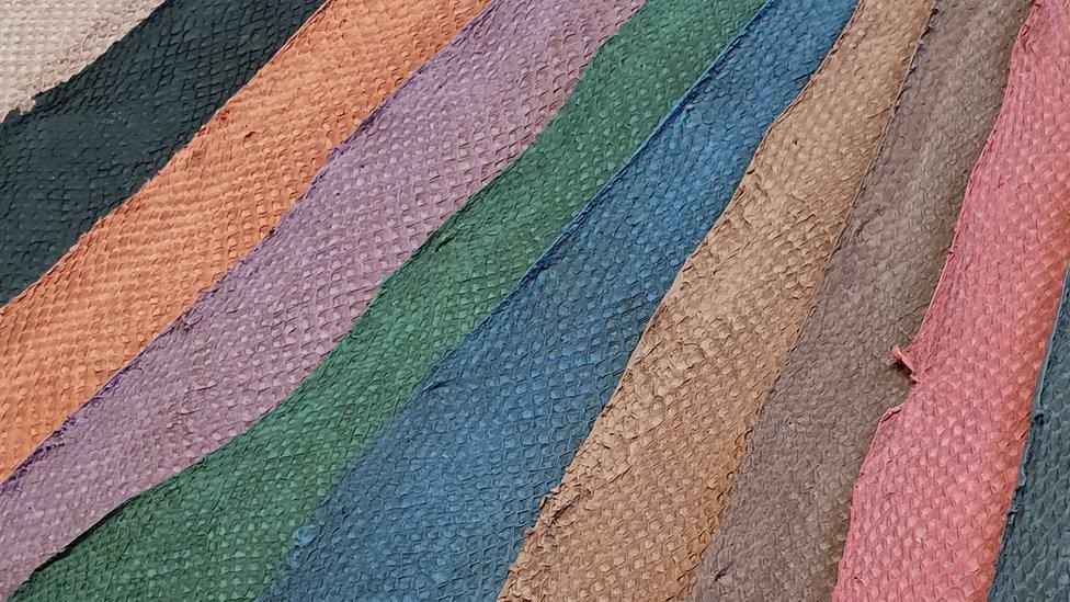 0f99976e202 Atlantic Leather produce cueros de pescado de cuatro especies diferentes.