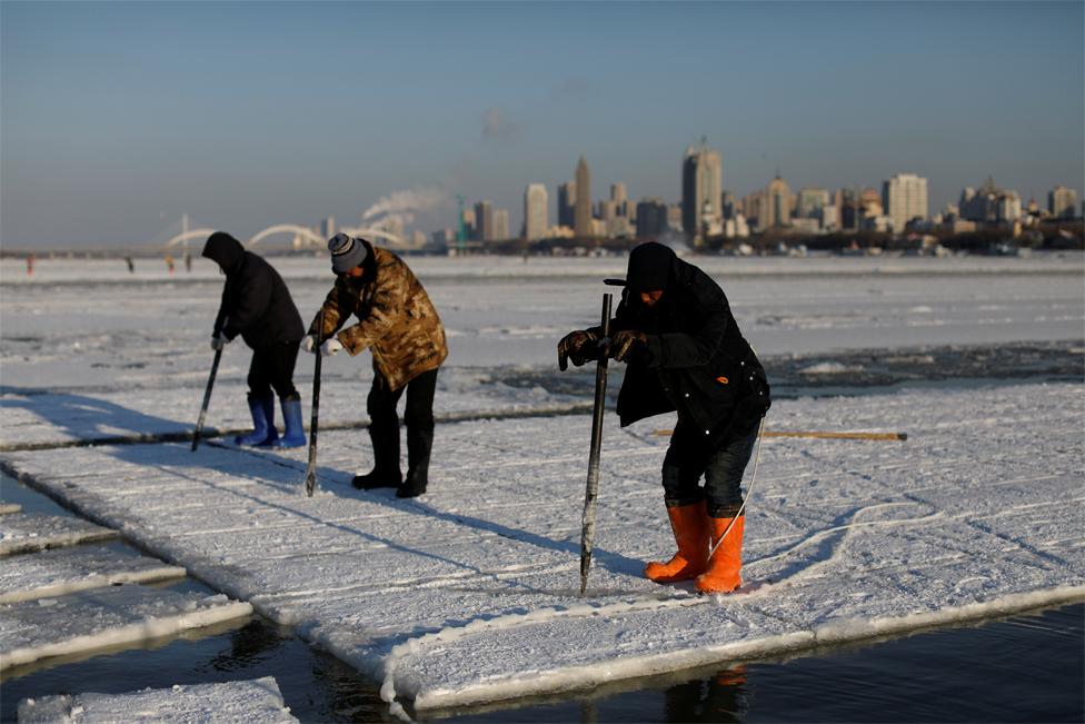 Workers use ice picks to break up blocks of ice