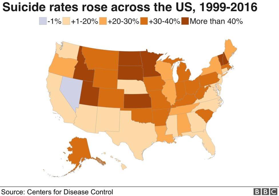 suicide rate across US