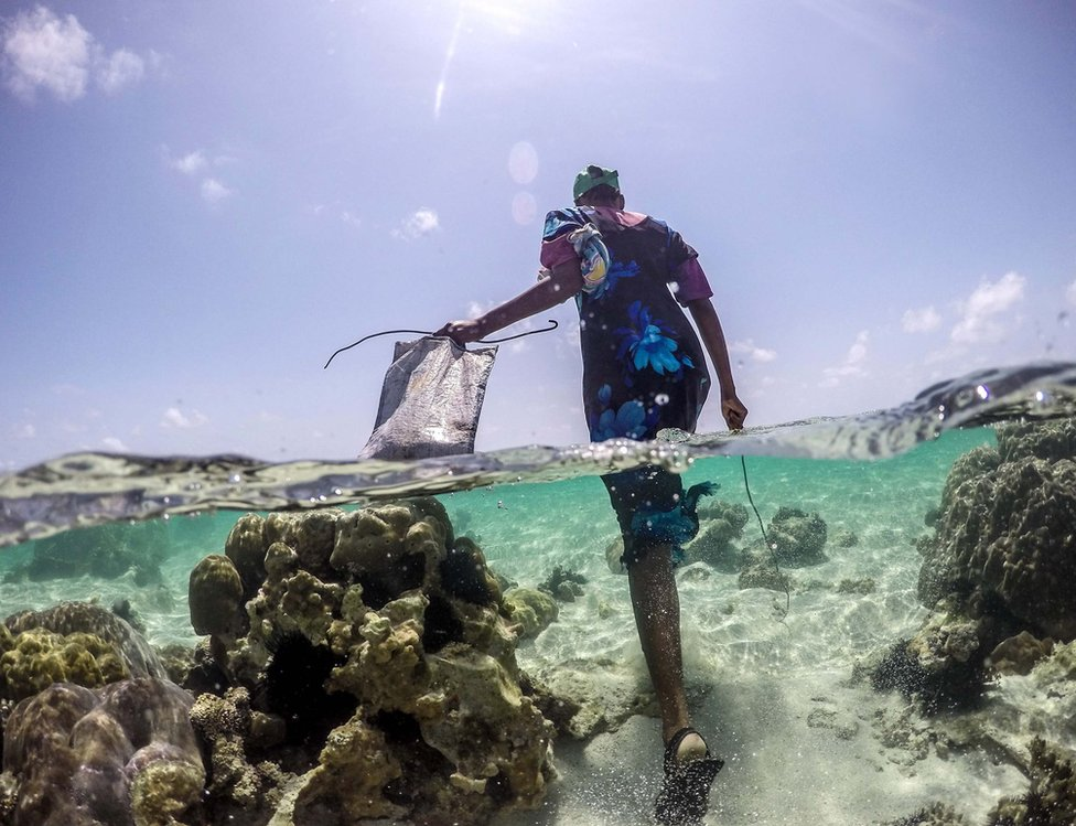 A woman wades past coral formations off Bwejuu beach