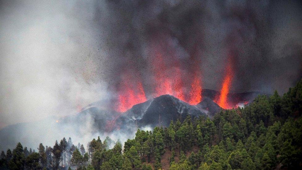 Erupciones del volcán La Palma.