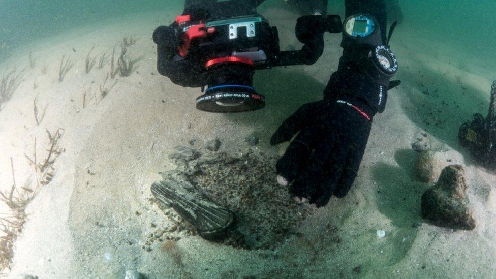 ronilac fotografiše ostatke oko olupine