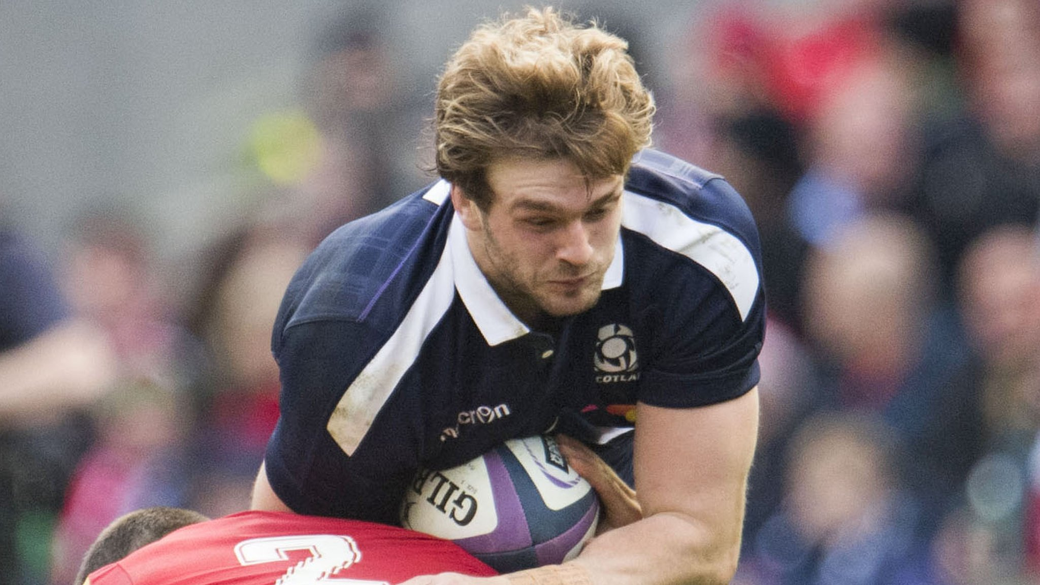 Scotland's Gray out for around four months with back injury