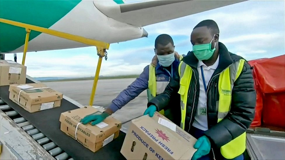 Ground staff loading fresh produce into a Kenya Airways Boeing 787