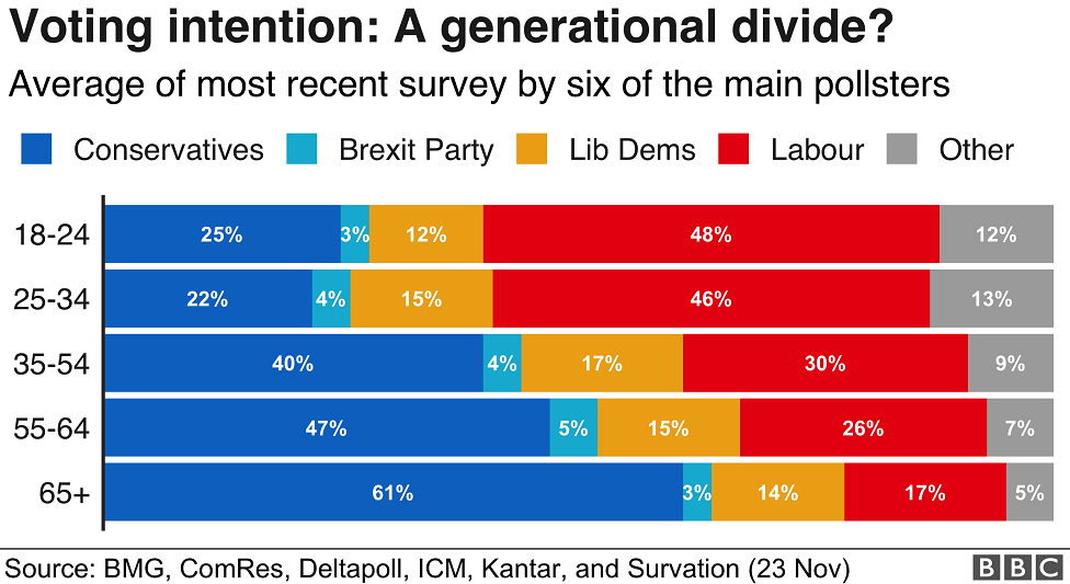 Graph: Voting intention: A generational divide