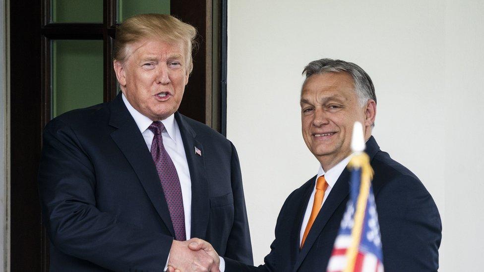 Trump praises 'respected' Hungary PM Orbán - BBC News