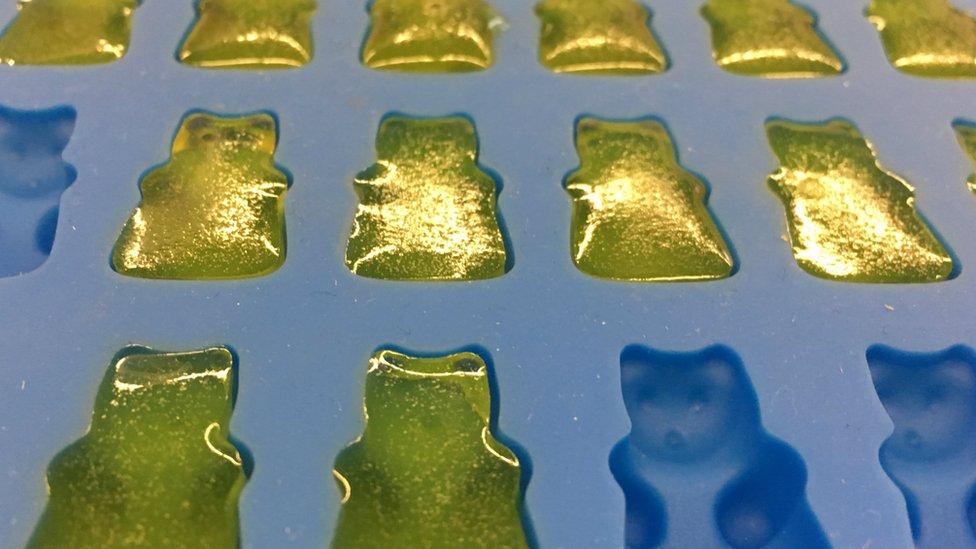 osos de goma