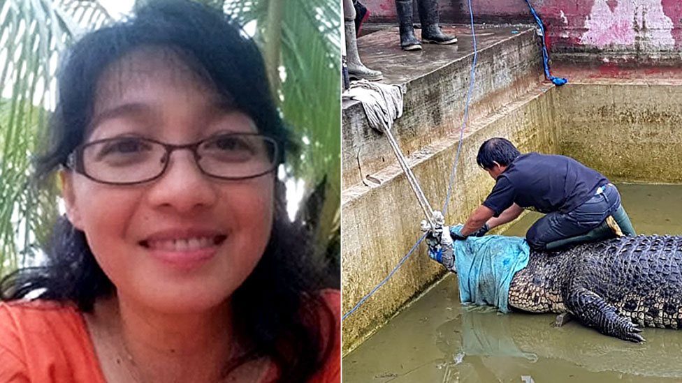 Indonesian woman mauled to death by giant pet crocodile