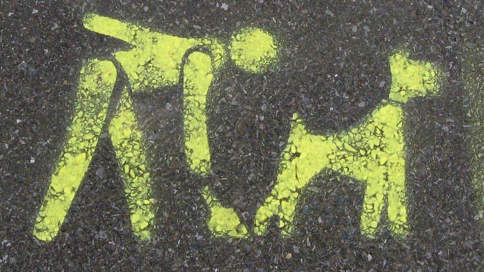 Poop scoop sign
