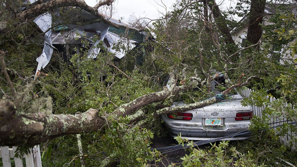 A tree lays on a home and car after Hurricane Michael passed through Panama City, Florida, 10 October 2018