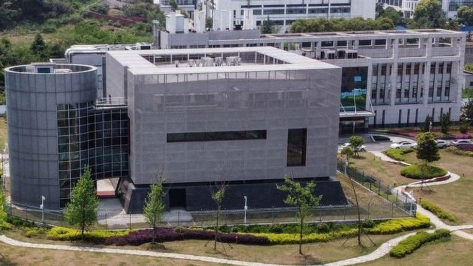 معهد الفيروسات في ووهان