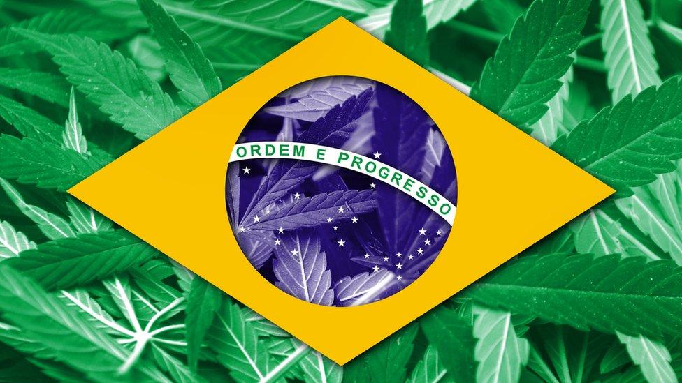 La bandera de Brasil con la parte verde hecha de marihuana