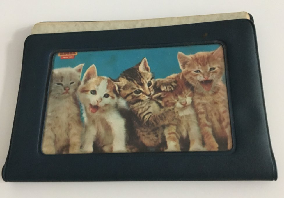 Rumiko Masumoto's driver's licence, in a cover with kittens on it, which was found in her car when she was kidnapped