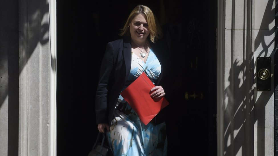 Karen Bradley leaving Downing Street after a cabinet meeting on Tuesday