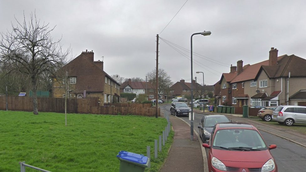 Teenager stabbed to death in Eltham