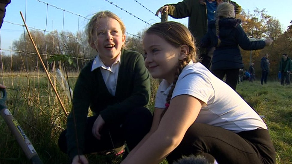 Plans revealed for 'Young People's Forest' in Derbyshire