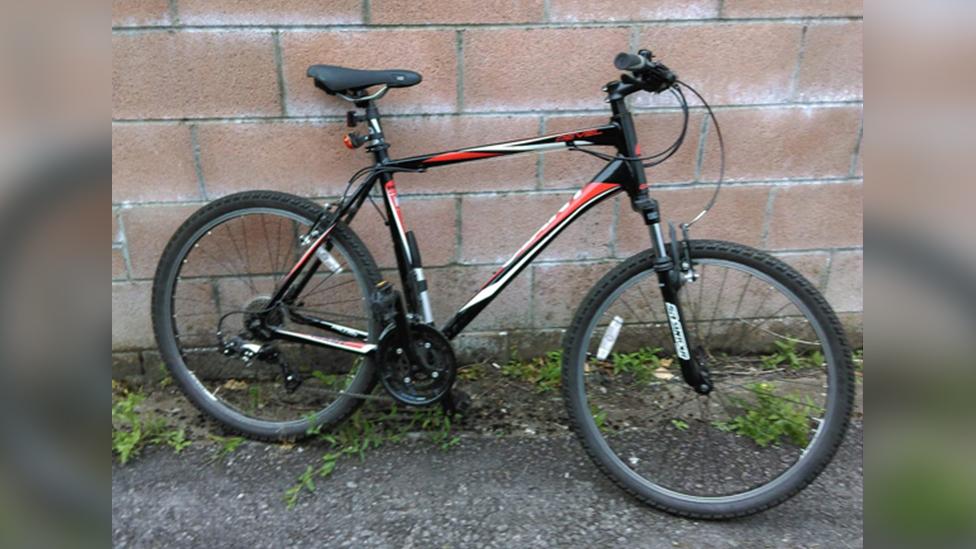 picture of stolen bike