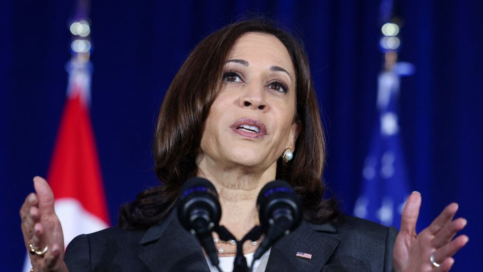 US Vice President Kamala Harris delivers a speech at Gardens by the Bay in Singapore before departing for Vietnam