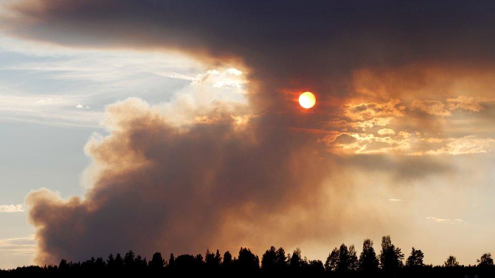 Fire burns in Karbole, Sweden, on July 15, 2018.