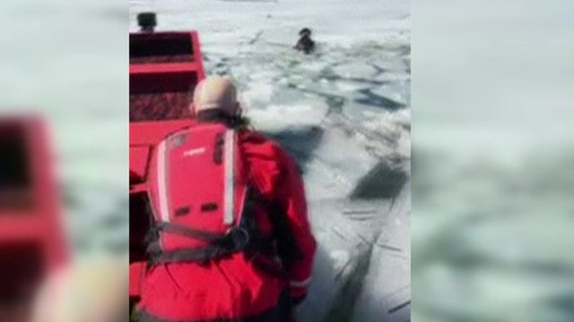 Dog being rescued from icy lake in Utah