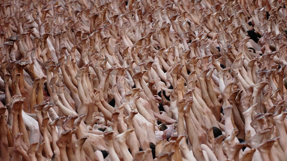 A nude photograph/ installation in Lyon
