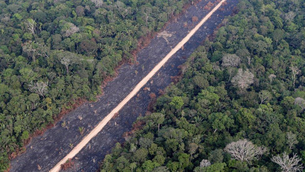 Una carretera atraviesa la selva amazónica cerca de Porto Velho, estado de Rondonia, Brasil, 14 de agosto 2020