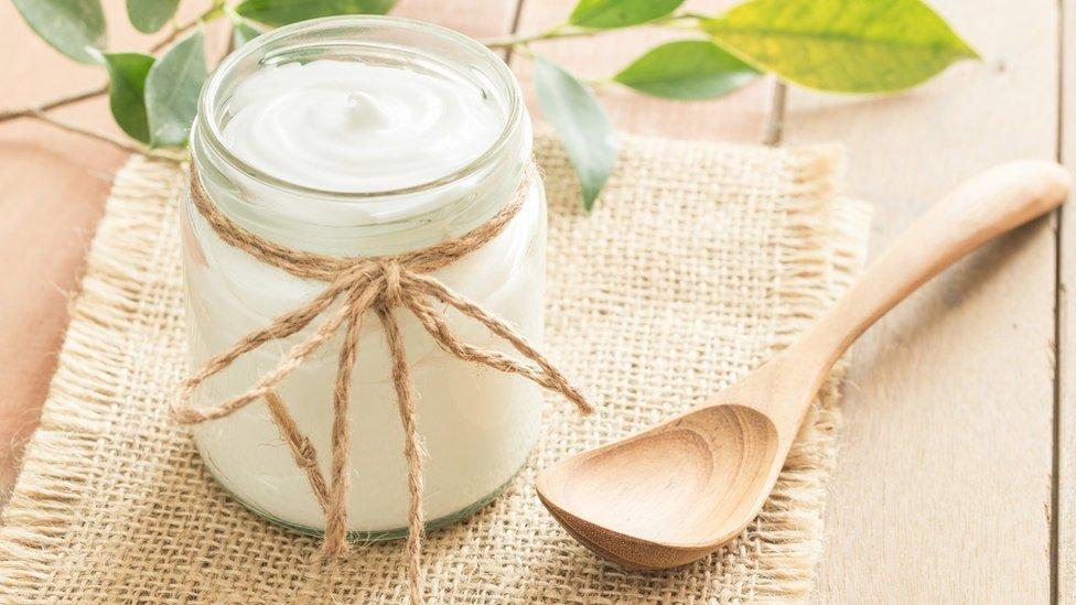 jogurt sa probiotikom