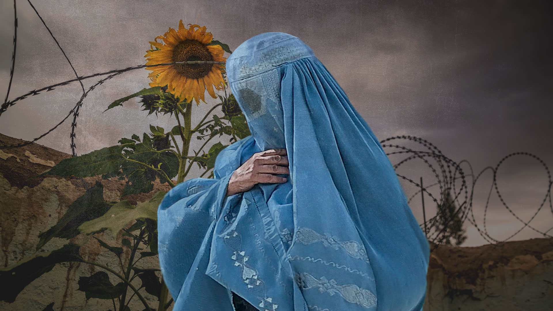 Pregnant Afghan woman, illustration