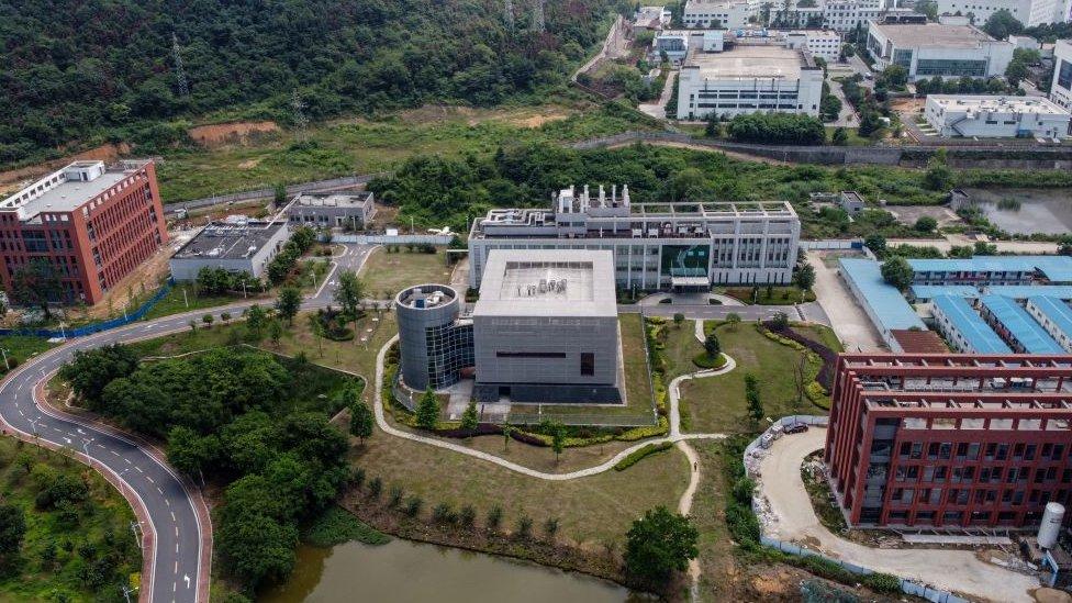 Instituto de Virología de Wuhan.