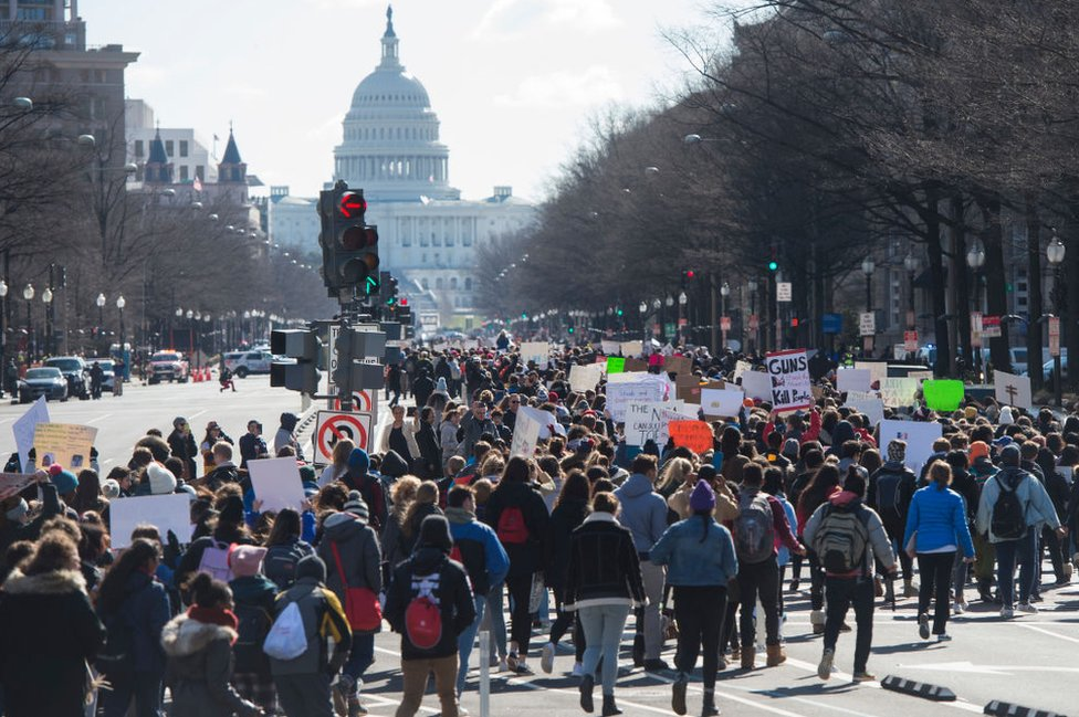 Students in the Washington DC area marched to Congress and the White House