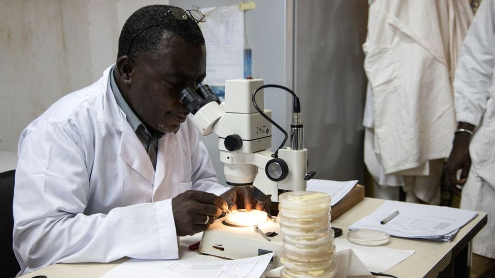 Lab technician in Burkina Faso studying malaria parasite