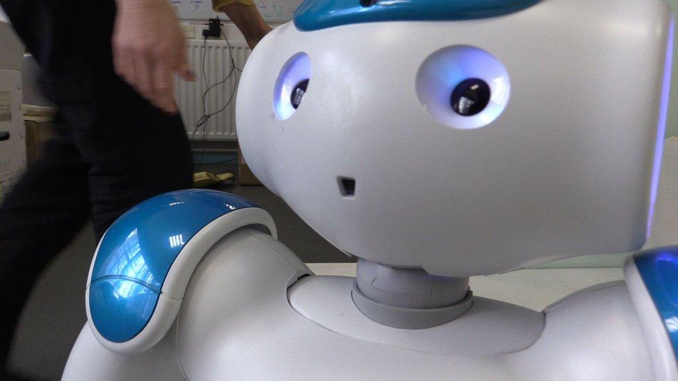 Robin the robot