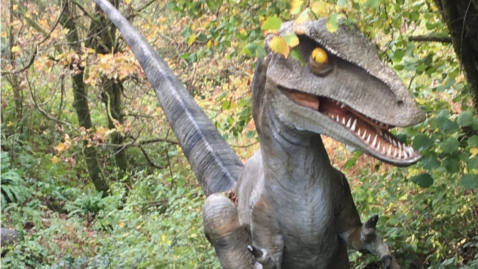 Storm Callum: Appeal for missing dinosaur model