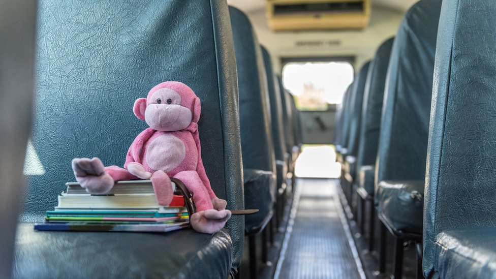 Toy monkey and books on a bus