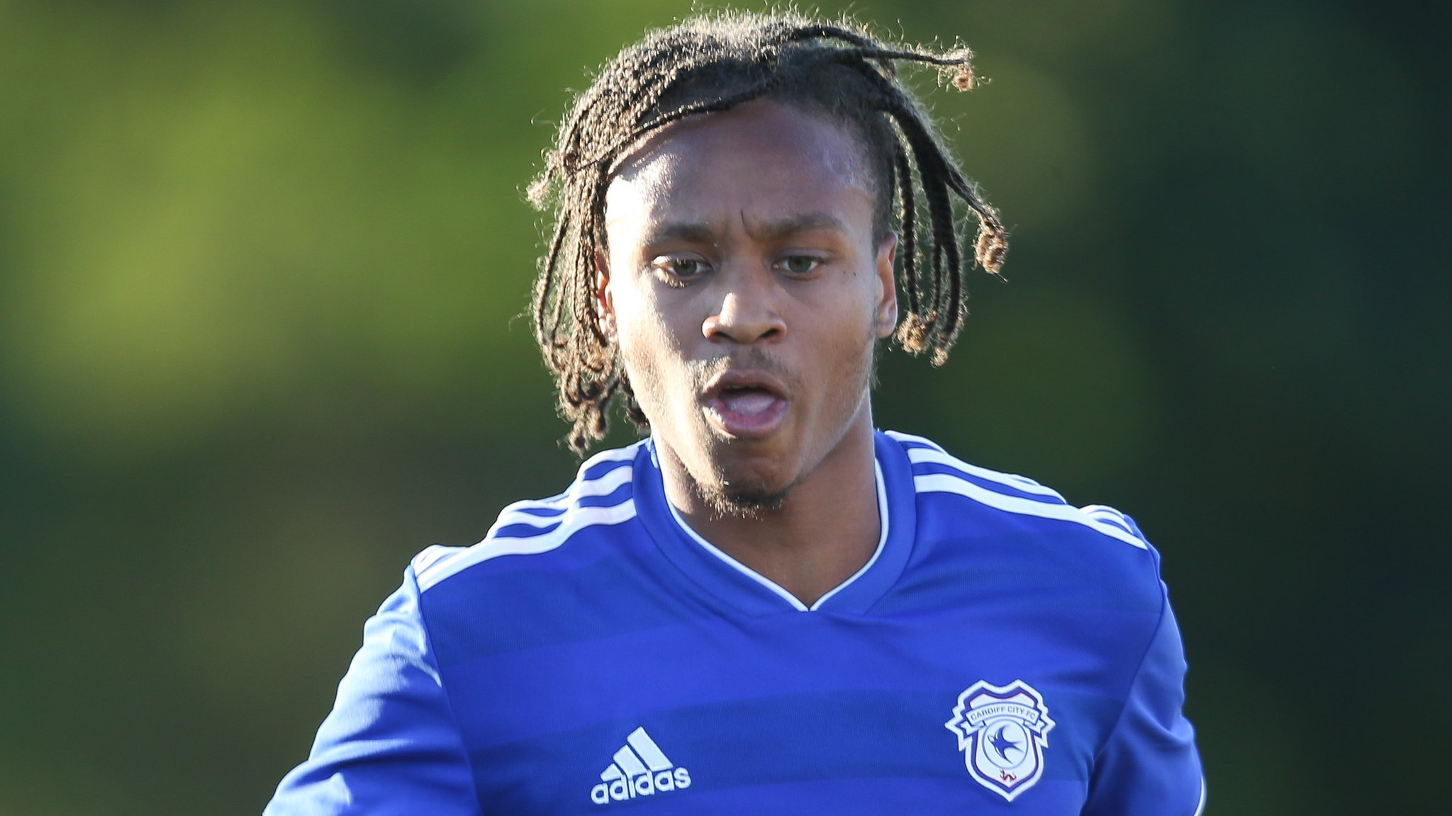 Bobby Reid: New Cardiff City striker inspired by 'crazy' 2017-18 season