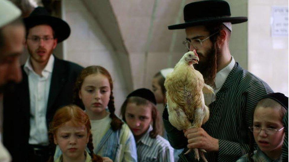 Judios sacrifican un ave